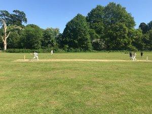 Cricket 3 dda6gruv4aef3ac