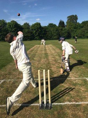 Cricket2 dda6j hvwaalfri