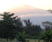 Tanzania 07/18 pic5