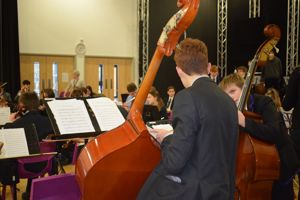 Orchestra day bass